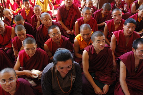 Many expressions of happiness, Tibetan Buddhists in traditional robes, malas, prayer mudra, monks, nuns, sangha, Sakya Lamdre, Tharlam Monastery, Boudha, Kathmandu, Nepal by Wonderlane