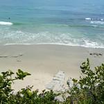 Laguna Beach Trip 15