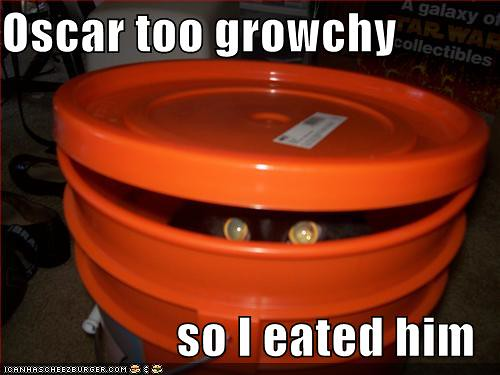 funny-pictures-cat-bucket-oscar-grouch