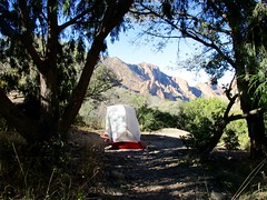 Basin campground, Big Bend National Park, Texas