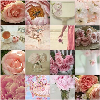 TILT..Pink Petals...