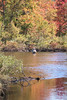 Fly Fishing on Moose River