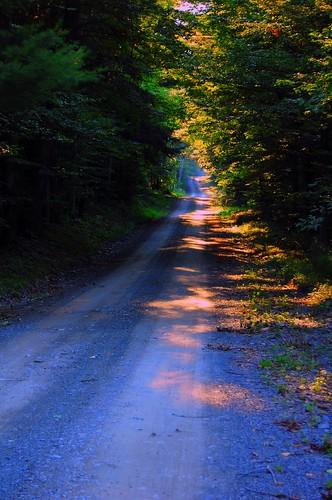 blue colors long journey saturation dirtroad raod tones magical polletyroad