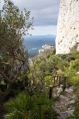 Mediterranean Steps (Gibraltar)