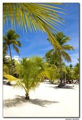 Isla Catalina. República Dominicana.