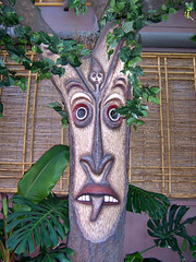 Outside The Tiki Room