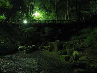 park at night 2