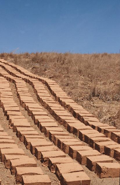 Brick runs