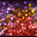 Purple & Red - Cellular -  _DSC1715m
