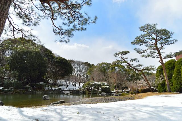 石橋文化センター・雪景色