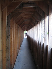A Wood Tunnel