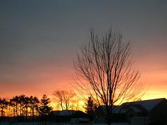 Sunrise, Jan. 3rd, 2008