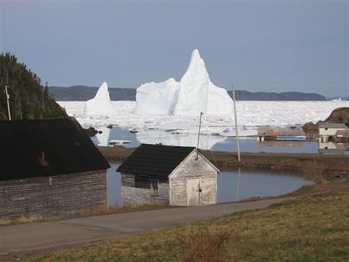 Berg Water - Icebergs, Cottrells Cove, Terranova, Canadá (1)