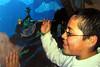 UPA Mural Painting