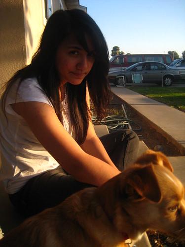 california family sunset chuck lopez porterville chihuahuaterrier katielopez leahlopez