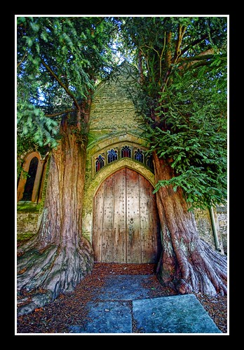 The most amazing door!