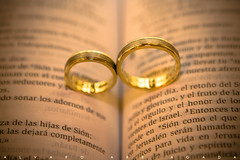 wedding ceremony supply, ring, metal, jewellery, macro photography, close-up, gold, circle, wedding ring,