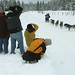 Dogsled Paparazzi! by Andy Suderman