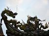 Qingshan Gong (4)