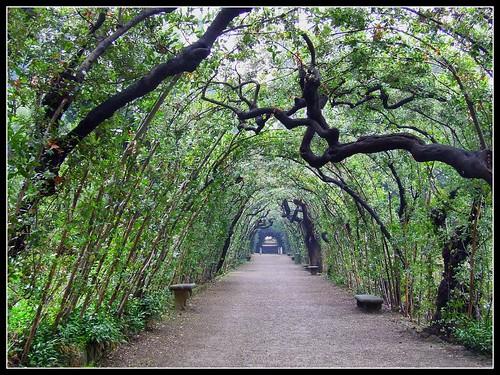 Le bellezze del giardino di boboli il mondo - Giardino di boboli firenze ...