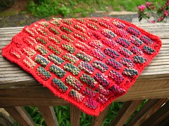 another kitchen dish cloth