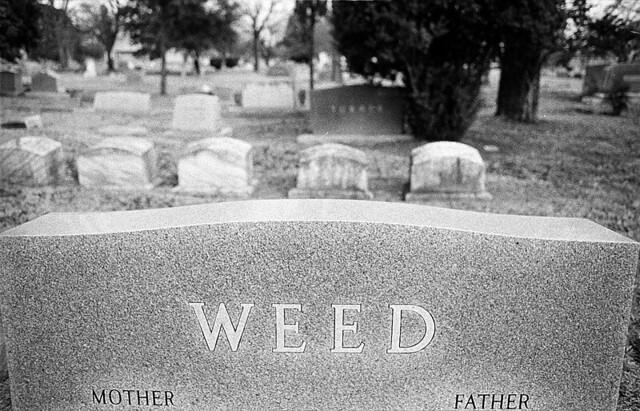 tombstones_05.jpg