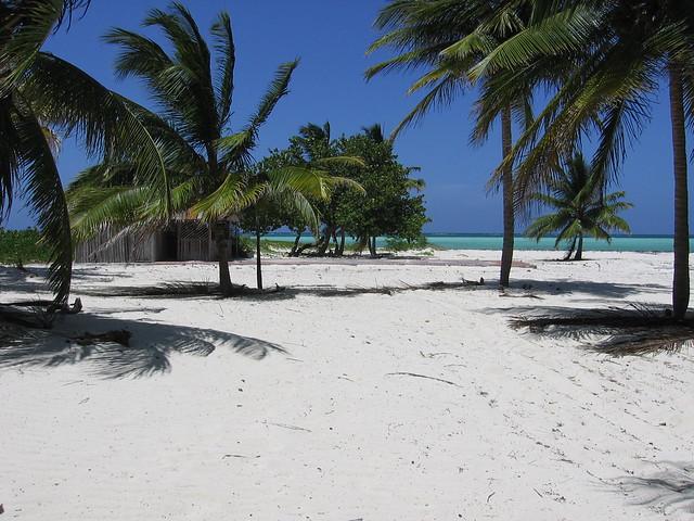 playa de los Pinos