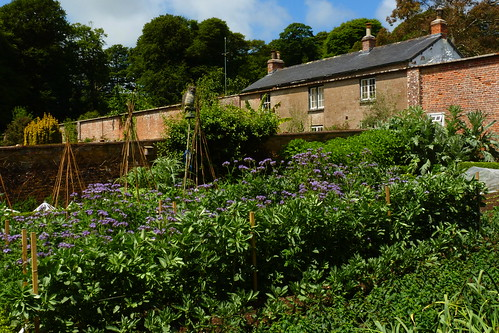 Walled garden at Trengwainton. Picture by Flickr user treehouse1977