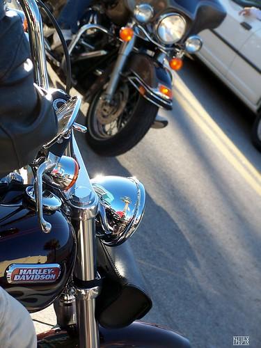 2014 Daytona Bike Week Photos Uncensored