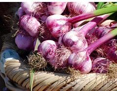 vegetable, onion, shallot, purple, produce, food,