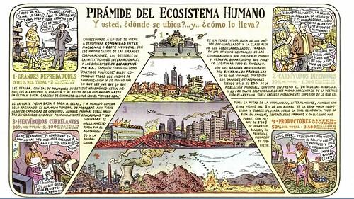 Pirámide ecosistema humano