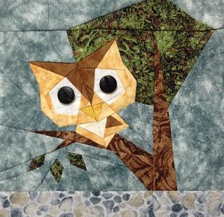 Owl #11