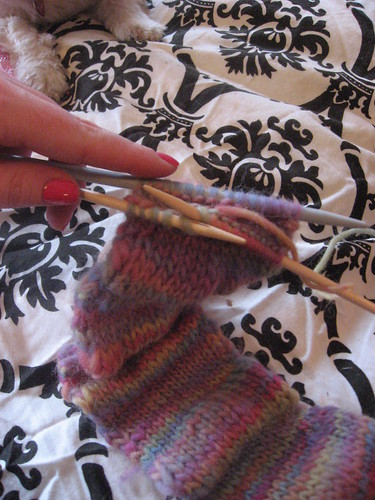 Knitting Universe Knitters Paintbox : Bevin brian s totally knitting universe