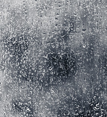 winter(0.0), snow(0.0), rain and snow mixed(0.0), ice(0.0), line(0.0), frost(0.0), wave(0.0), monochrome(0.0), freezing(0.0), drop(1.0), water(1.0), monochrome photography(1.0), black-and-white(1.0),