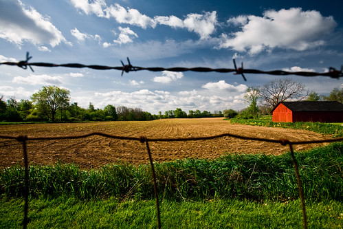 morning travel nature field grass mi barn landscape outdoors drive spring pointofview romeo environment portfolio