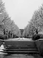 Winter Passage