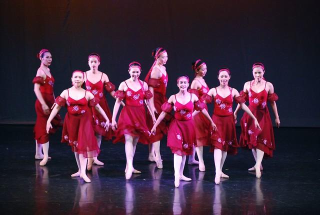 Ballet:Little Swan