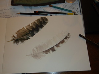 7Mar14 work in progress - feather