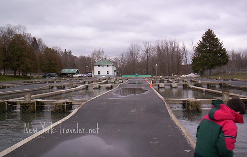 rainbow trout fish hatchery in rome ny new york