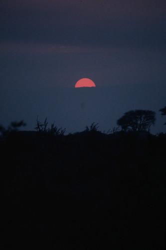 tanzania redsunset redsun tropicalsunset tarangirenationalpark africansunsets africansun manyararegion apoetonamotorcycle