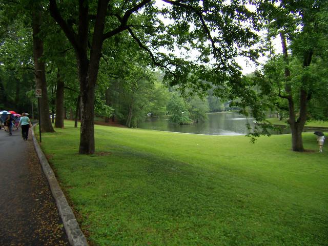 P5170115-Duck-Pond-Garden-The-Pond