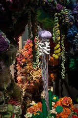 Smithsonian Coral Reef