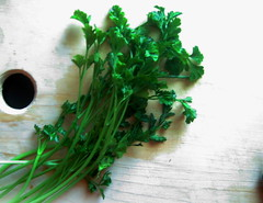 parsley, herb, produce, food, coriander, fines herbes,