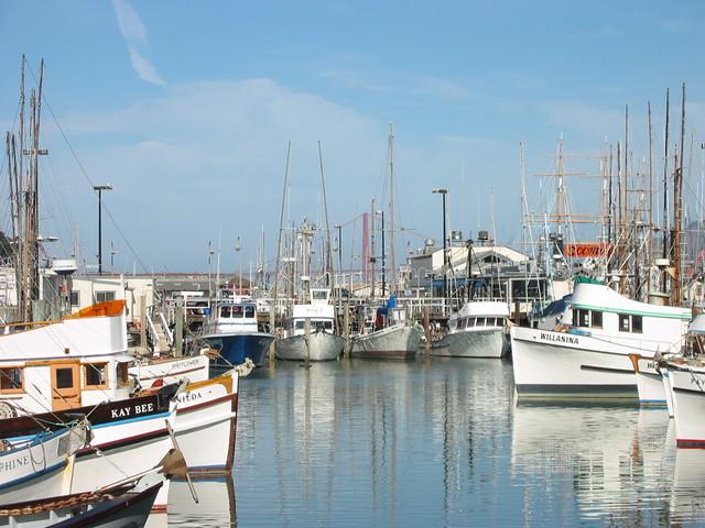 San francisco fisherman 39 s wharf dock with fishing boats for San francisco fishing
