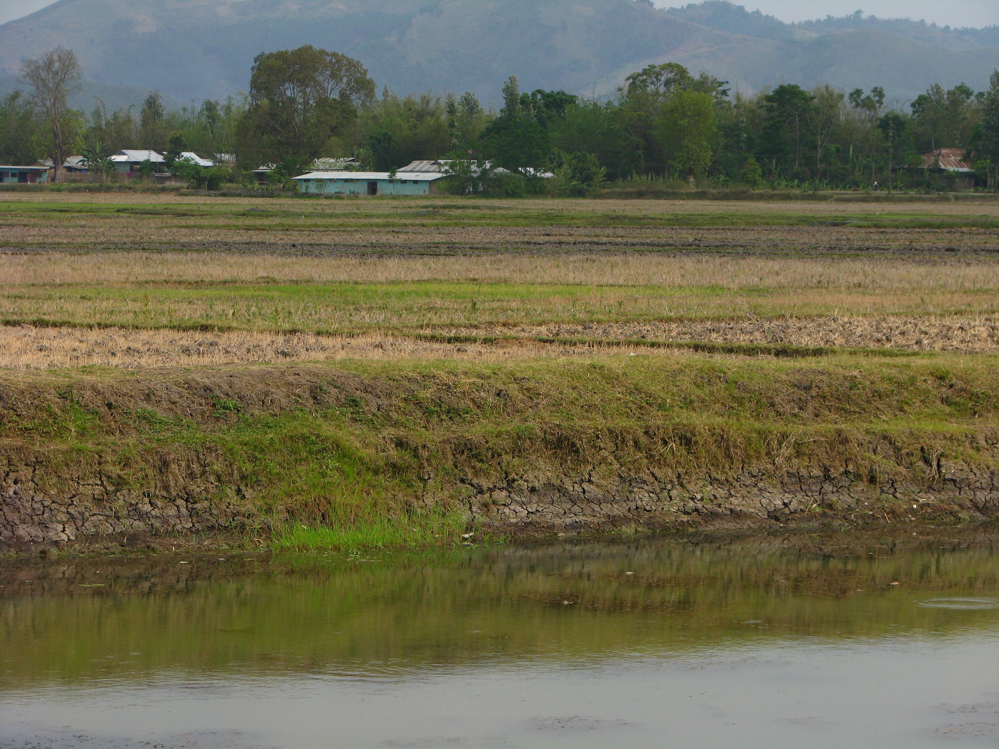 Pond wall improper design manipur flickr photo sharing for Design of pond embankment