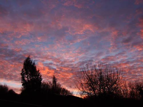 uk trees winter england sky nature sunrise interestingness europe britain explore gb soe oxfordshire 2007 ih oxon shepherdswarning blueribbonwinner supershot ©allrightsreserved justclouds amazingshots naturewatcher redmorning