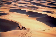 Dunes de Merzouga2, Maroc
