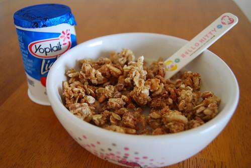 Yogurt & Fiber