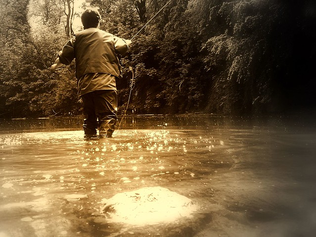 My River ,My Passion...fly Fishing
