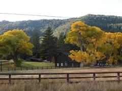 Washoe Valley, Nevada in Autumn